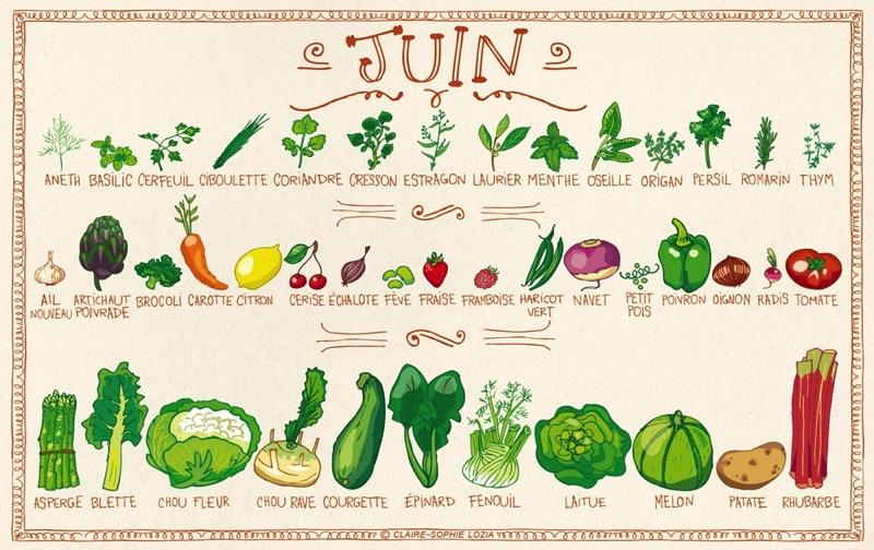 Connu Les fruits et légumes du mois de juin - Saveurs Magazine IH26