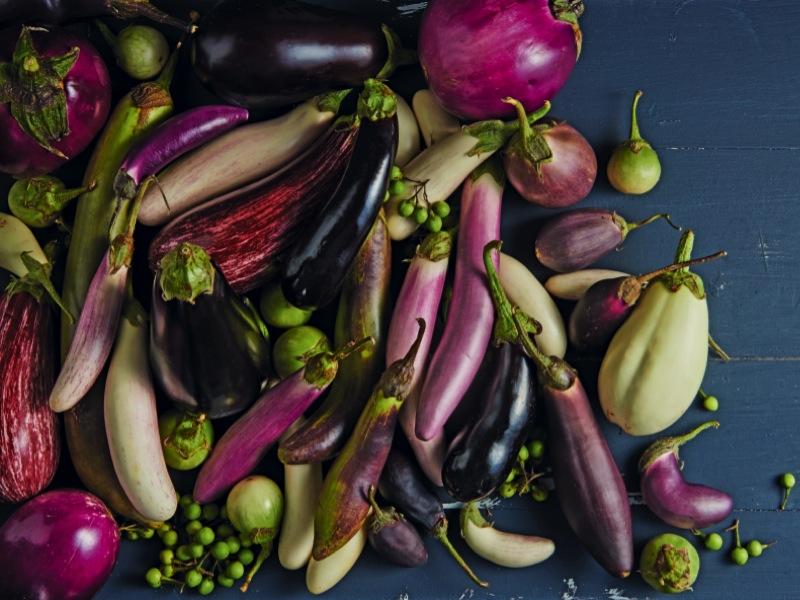 Aubergine comment la choisir et la conserver d couvrez nos recettes - Comment congeler des aubergines ...