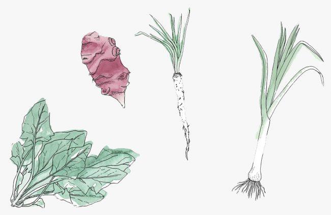 calendrier des fruits et légumes de saison : les légumes d'hiver