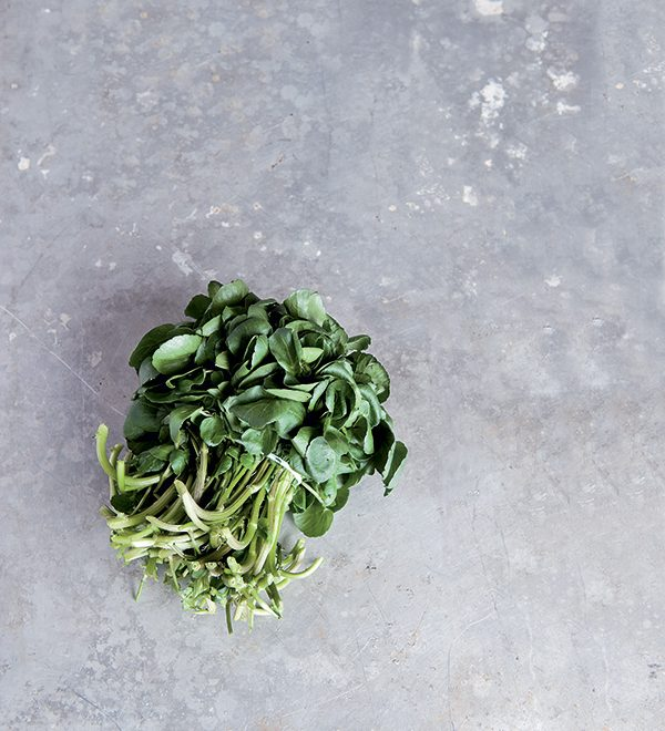 cresson soupe veloute