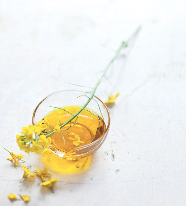 huile colza pour cuisson