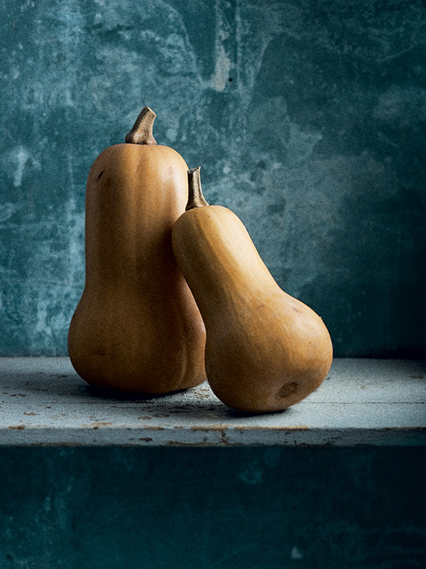 Courges courge