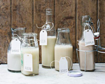 laits végétaux choisir