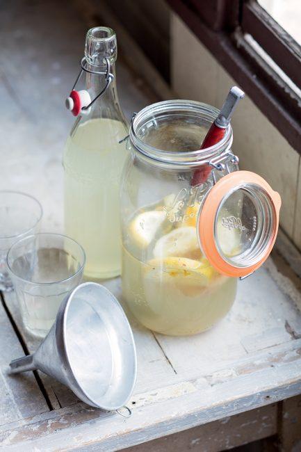 fermentation kéfir recette